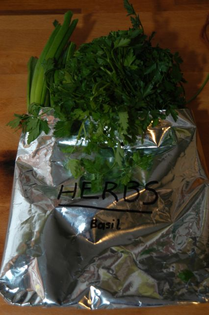 Reusing Freezer Plastic Bags (bags from frozen produce) | ecogreenlove